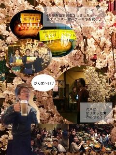 花見2015.jpg